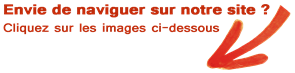 http://www.dgroupe.fr/media/news/newsletter22092015_nouveausite1.png